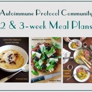 aip paleo meal plans